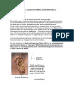 Definicion de La Auriculoterapia y Conceptos de La Somatotopia