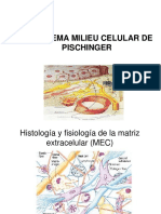 Sistema Celular de Pischinger