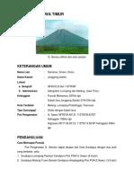 Gunung Semeru Indonesia