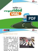 Seguridad Vial- PSE-VFinal (1)