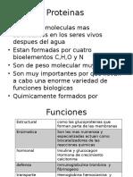 Proteinas.pptx