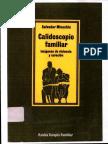 Calidoscopio Familiar de Salvador Minuchin