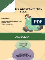 Consorcio Final