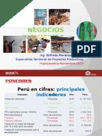Presentacion Paucara.ppt