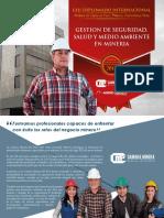 DV122 Gestion de Seguridad Salud y Medio Ambiente en Mineria B