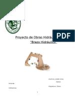 Proyecto de Obras Hidráulicas (2).docx