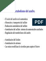 Tema 10 Metabolismo Del Azufre Compatibility Mode