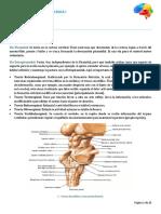 Resumen Neuro I.pdf