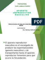 apreprodmasc-140218232132-phpapp02