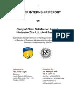 hindustan zinc limited debari limited summer internship report
