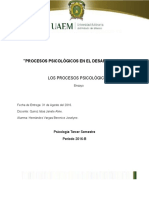 ensayo sobre procesos psicologicos