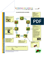 cocc3.pdf