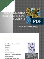 Staphylococcus Aureus Meticilino Resistente