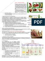 32c3.1-ALIMENTOS-TRANSGENICOS-2016b.doc