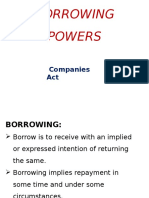 Borrowing Powers Ppt