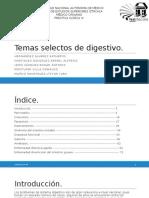 Expo-de-PC-IV (2)