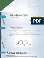 FERMENTACION (1).pdf