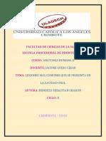 Monografia de Anatomia