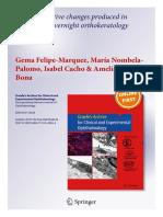 Accommodative changes with orthokeratology