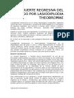 Muerte Regresiva Del Mango Por Lasiodiplodia Theobromae
