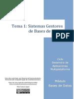 Tema 1-Sistemas Gestores de Bases de Datos_P1.3
