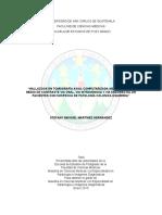 Borradores_de_Informe_Final1 (1).doc
