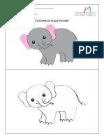 Elefant.pdf