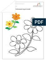 Floare.pdf