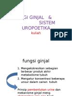 Fisiologi Ginjal & Sistem Uropoetika