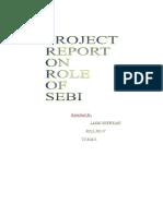 21166117 Ty Bms Project on Sebi