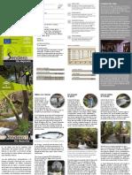239_RioMajaceite.pdf
