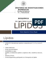LÍPIDOS (1)
