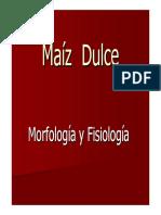 MAIZ DULCE FISIOLOGIA.pdf