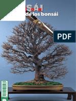 Bonsái Pasión 80.pdf