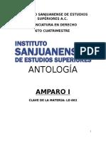 Amparo I
