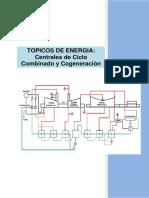 Topicos de Energia-Centrales de Ciclo y Combinado y Cogeneración