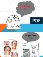 Penyuluhan Phlegmon