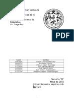 Estadística - Informe Final.docx