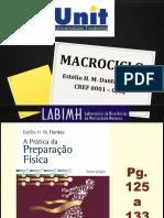 02 - Macrociclo