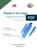 Rapport Tunisie Telecom