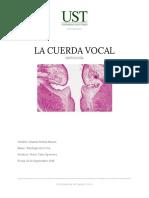 Informe Histologia de La Cuerda Vocal