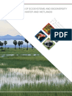 Humedales_TEEB_WaterWetlands_Report_2013.pdf