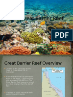 Coral Reef-The Great Barrier Reef