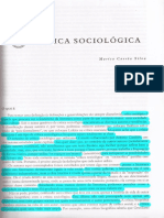 Marisa Corrêa Silva - Critica Sociológica
