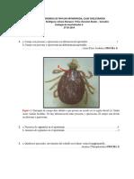 Clave Taxonomica Zoologia II. Aracnidos