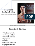 Anatomy Mckinley Ppt Chapter 1