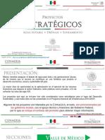 Proyectos Estrategicos Nov 2015.pdf