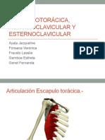 4 Articulacionescpulotorcicaacromioclavicularyesternoclavicular 150327161221 Conversion Gate01