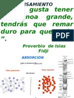 ABSORCION.pptx