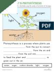 photosynthesis-worksheet